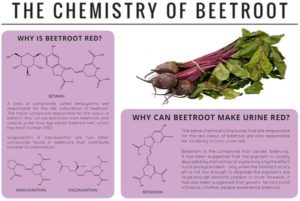 The Chemistry of Beetroot